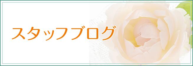 スタッフが綴る キレイが生まれる現場から staff blog
